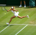 Sharapova I ; comments:30