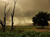 Ето и бурята ; comments:103