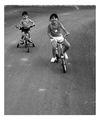 Колоездачи ; comments:14