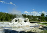 Grotto Geyser,Yellowstone NP ; comments:13