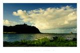Далечни острови ; comments:43