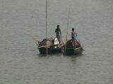 рибари ; comments:6