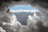 Heaven ; comments:411