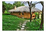 Къщата-Гнездо ; comments:107