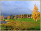 The colours of the autumn ; comments:59