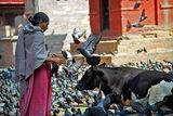 Катманду, Непал ; comments:40