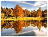 есенни отражения ; comments:140