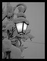 Лампа в снега ; comments:45