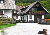 Словения ; comments:16
