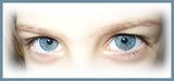 две хубави очи ; comments:86