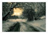 Разкази за зимата ; comments:84