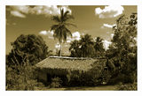 Къщата на Робинзон ; comments:26
