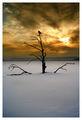 върху замръзналото езеро ; comments:220