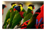 ...Всички сме различни...всички сме различни...всички сме различни... ; comments:54