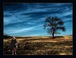 Есента на живота ; comments:68