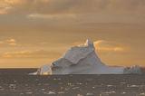 айсберг в Южния залив на о-в Ливингстън ; comments:69
