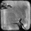 the-man-l-eau-....-the-man-l-oiseau... ; comments:44
