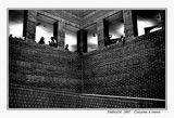 Силуети и стени... ; comments:85
