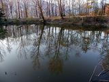 riflessi di lago ; comments:16