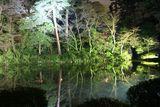 Нощна приказка до езерото ; comments:20