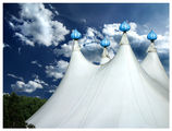 Небесни шатри ; comments:46