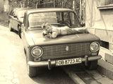 Върху  колата на дядо  е най-добре:):):):) ; comments:34