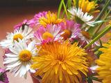 Пролетен букет ; comments:42