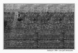 Човекът и хилядите стълби. ; comments:136