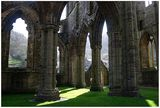 Tintern Abbey ; comments:39