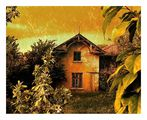 Старата къща на мама ; comments:90