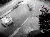 Сънувах дъжд ; comments:26