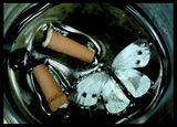 smoking kills? ; comments:66