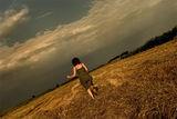 Небето... и полето .... II ; comments:26