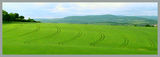 Земеразделяне в Германия ; comments:71