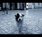 Малкият Чочко на Голямата гара :) ; comments:30