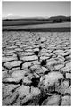 desert 2 ; comments:7