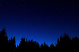 The Nightsky over the Forest ; comments:11