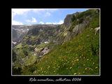 В планината ; comments:16