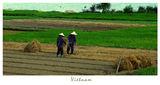 Vietnam #1 ; comments:26