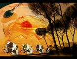сънувах-Африка... ; comments:46