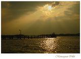 Manasquan Inlet ; Comments:13
