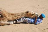Я камилата, я камиларя ; comments:28