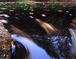 щедра есен 3 ; comments:5