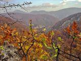 Някъде в Западна България ; comments:52