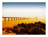 Една цветна утрин, обгърната в мъгла...ти не беше там... ; comments:22