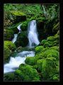 Vodopad v zeleno ; comments:28