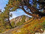 Есен в планината ; comments:31