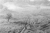 Мъгливо ; comments:16