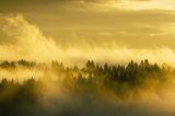 Последния изгрев на 22 ноември ; comments:48
