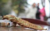 Есенно... ; comments:42